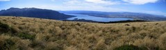 Lake Te Anau, viewn from just above where the Kepler track crosses the bushline on the first day's ascent.
