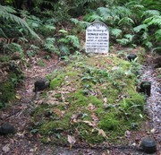 "Scot Donald Keith's grave, who died from exhaustion in the Hollyford Valley. The grave is denoted ""historic"" and regarded an attraction, because it dates back as far as 1886 (wow!)."