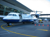 The small plane (tail number: ZK-JSZ) with which I flew to Wellington.