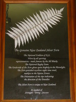 Information about the silver fern - in parliament.