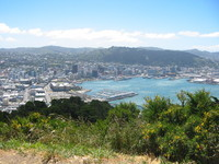 Splendid view over Wellington from Mt Victoria. The big flat building to the left of the Yacht harbour is Te Papa.
